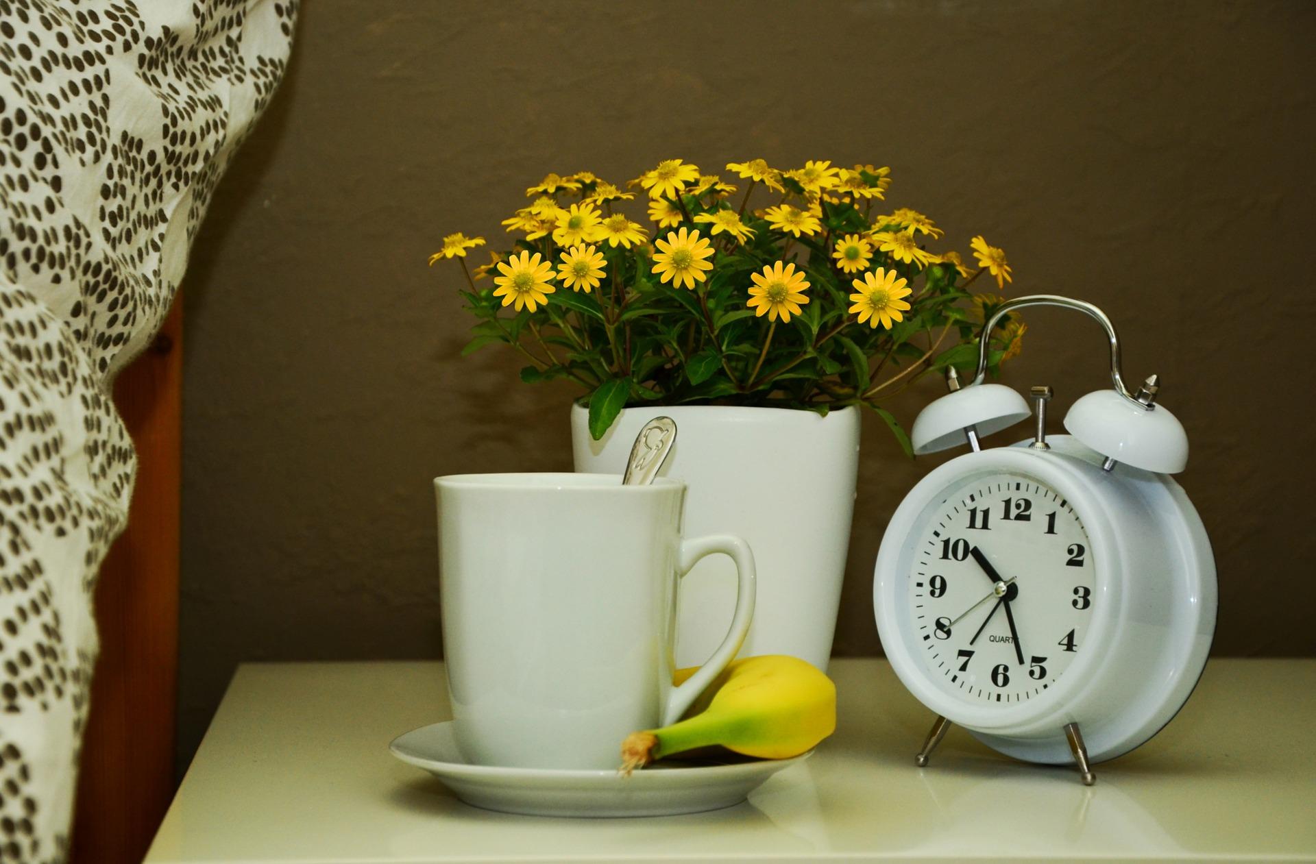 3 důvody, proč si po ránu zacvičit